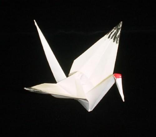 OrigamiWhoop.jpg